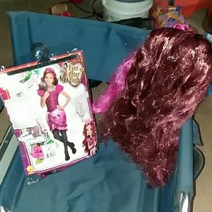 Flash sale $15 Briar Beauty Costume w wig, New